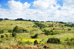Africa Landscape. In the Mountains, Tanzania, Africa Stock Image