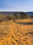 Africa Landscape. Of a trail in the African bush heading towards mountains at sunset royalty free stock images