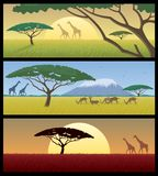 Africa Landscapes Stock Photo