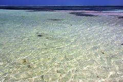 africa linia brzegowa spienia piankową lagunę relaksuje Zanzibar Fotografia Stock