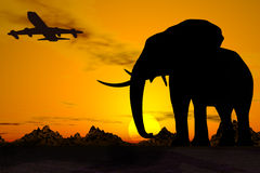 africa lopp Arkivfoto