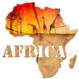 Africa Map Wooden Illustration. Africa map with wood texture and colorful landscape of fantasy, with baobab trees and giraffes Royalty Free Stock Image