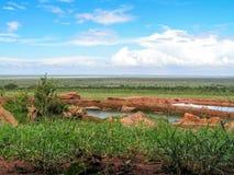 Africa. Masai Mara Landscape Savanna Stock Image