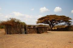 africa mieści sawannę Fotografia Stock