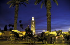 AFRICA MOROCCO MARRAKESH Royalty Free Stock Photo