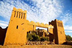 Africa in morocco the Royalty Free Stock Images