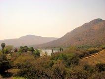 africa near berömda kanonkopberg den pittoreska södra fjädervingården Royaltyfria Foton