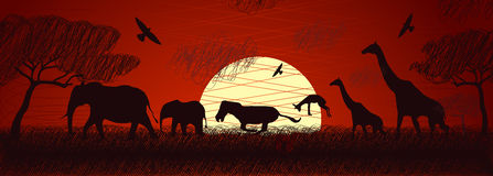 Africa safari animals vector. Texture African animals in doodle style. Vector Stock Image