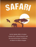 Africa, Safari poster design Stock Photography