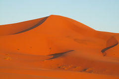 Africa sand desert dunes at sunset Royalty Free Stock Photography