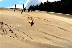 Africa- Sand Sleding on a Huge Dune in South Africa stock photography