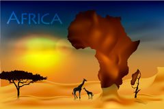 Africa, savannah fauna and flora Stock Images