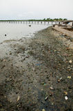 Africa Senegal river pollution soil Stock Photos