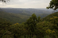 Africa, south Ethiopia, Mago national park. Mursi area Stock Photography