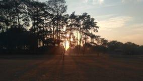 africa sunrise stock image