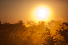 Africa sunset. The best sunsets in the world Royalty Free Stock Photos