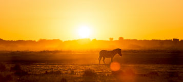 Africa Sunset Landscape Royalty Free Stock Photos