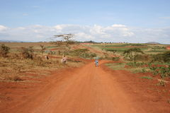 Africa,Tanzania, Street At Plantations Of Coffee Stock Images