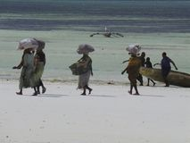 Africa. Tanzania Zanzibar traditional locals Stock Photography