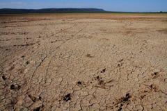 africa torka arkivfoton