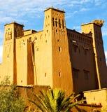 africa w Morocco contruction i dziejowa wioska Zdjęcia Stock