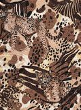 Africa wildlife background. Stock Photography