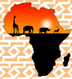 Africa wildlife. Map of Africa with abundant wildlife Royalty Free Stock Image