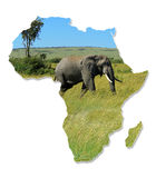 Africa Wildlife Map Design. Isolated on White stock photos