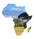 Africa Wildlife Map Design. Isolated on White royalty free stock images