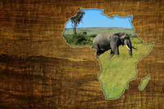 Africa Wildlife Map Design. Vintage Africa Wildlife Map Design on papyrus with elephant royalty free stock image
