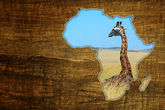 Africa Wildlife Map Design Royalty Free Stock Image