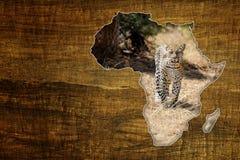Africa Wildlife Map Design Stock Photo