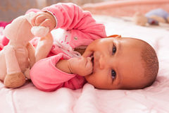 African american baby girl playing with a plush Royalty Free Stock Image