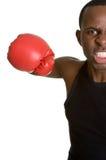 African American Boxer Stock Photos