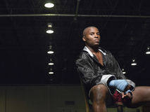 African American Boxer Sitting On Chair Stock Photos