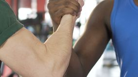 African American and caucasian male friends firmly shaking hands, support. Stock footage stock video footage