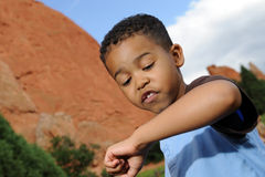 African American Child Playing with Ladybug. Happy African American child playing in a meadow Royalty Free Stock Images