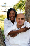 African american couple. Attractive young African American couple at a park sitting in a tree Stock Photos