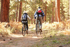 African American Couple Cycling Through Fall Woodland Stock Images