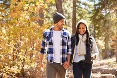 African American Couple Walking Through Fall Woodland Stock Images