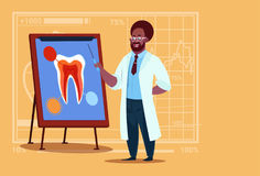 African American Doctor Dentist Looking At Tooth On Board Medical Clinics Worker Stomatology Hospital Royalty Free Stock Images