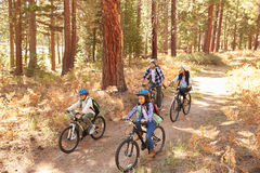 African American Family Cycling Through Fall Woodland stock photography