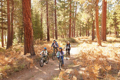 African American Family Cycling Through Fall Woodland royalty free stock photo