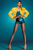 African-american fashion model. Attractive young African-american fashion model Royalty Free Stock Photography