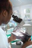 African-american female microscopist Stock Photography