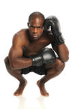 African American Fighter. With fighting gloves isolated over white background Royalty Free Stock Images