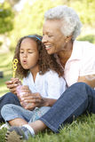 African American Grandmother And Granddaughter Blowing Bubbles In Park Stock Photo