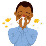 African American Man Suffering Allergy. Young sick African American man ill suffering spring allergy using white tissue on nose Royalty Free Stock Photo