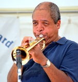 African american musician. Jazz trumpet player blowing his horn in concert on stage Royalty Free Stock Image