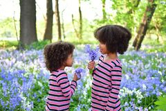 African American sisters are playing in the park curly African American sisters in dance dresses on the grass and bushes of lilac stock image